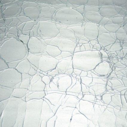 LAMBERTS 1xx Crackled